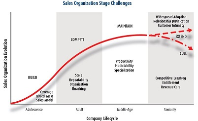 team Sales-Stage-Challenges